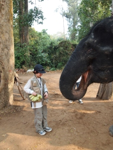 Youngest GeoKid feeds elephant at Bayon Temple, Siem Reap, Cambodia