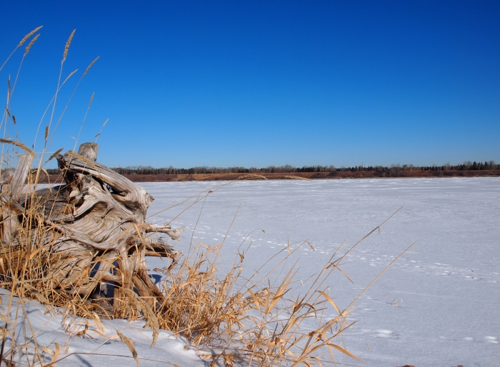 Frozen shore of Glenmore Reservoir