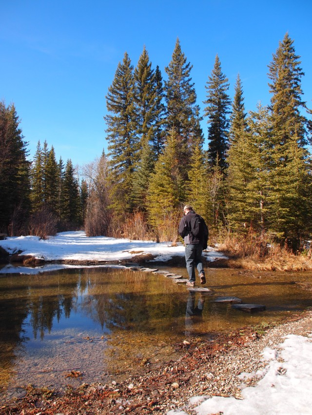 Stepping stone creek crossing in Griffith Woods