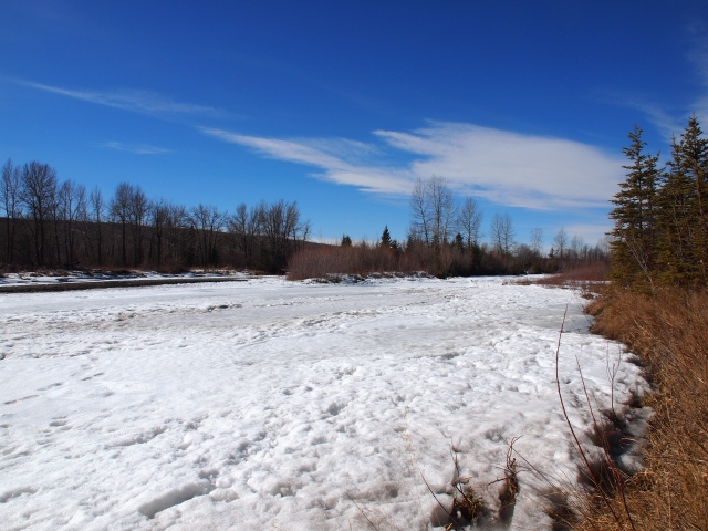 Snow-covered banks of the Elbow River