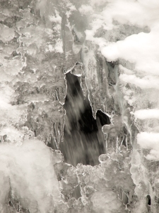 Water flowing behind the ice