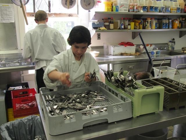 Dishwisher duties
