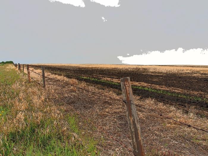 Farmer's field
