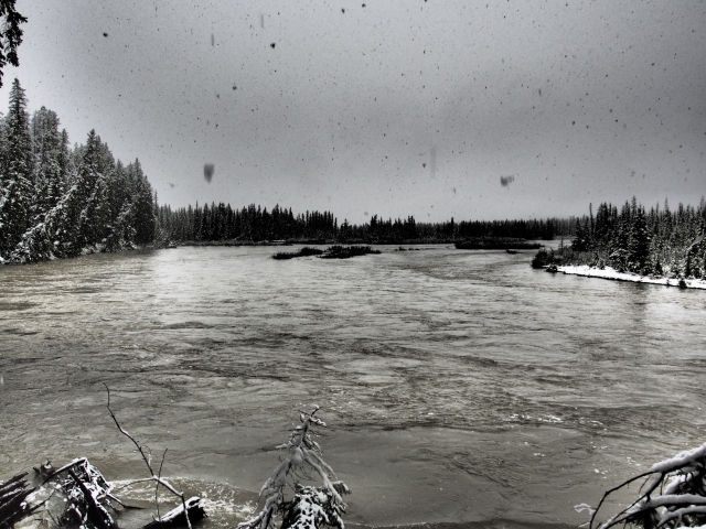Bow River, just east of Canmore