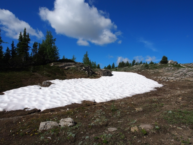 Snow patches on the way to Monarch Viewpoint