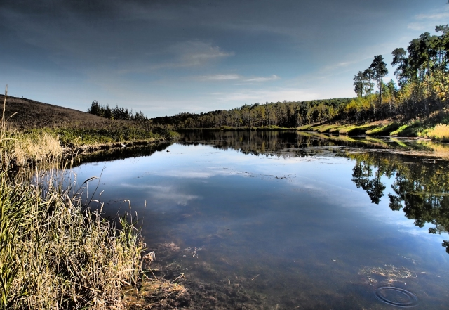 The pond on Pine Creek