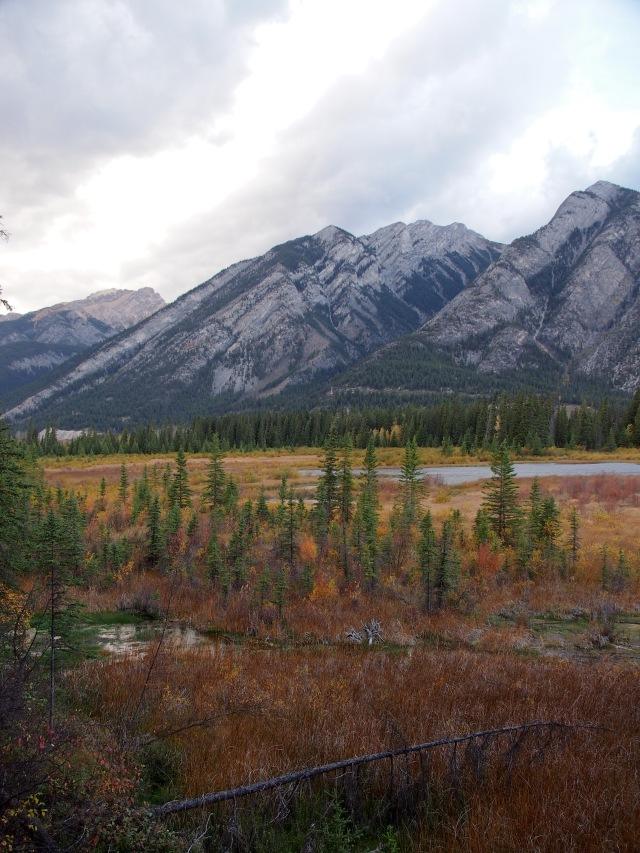 Valley bottom, Banff townsite