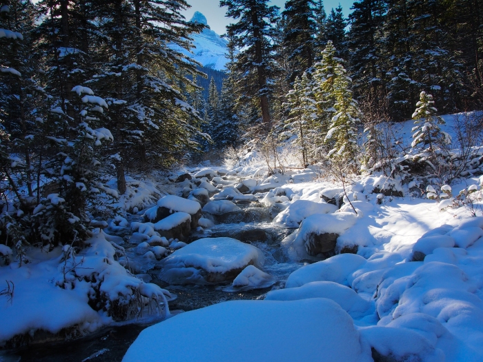 Snow along Three Sisters Creek, with a glimpse of Big Sister between the trees
