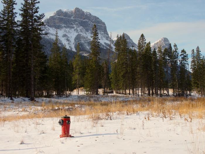 Fire hydrant in a snowy field