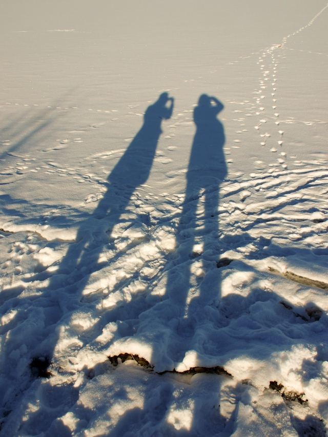 Photographers's shadows on Glenmore Reservoir