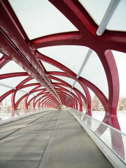 A good look at the steel structure while crossing the Peace Bridge