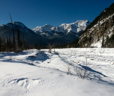 View along the Jura Creek channel, south across the Bow Valley