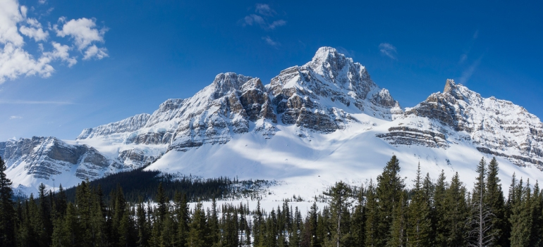 Crowfoot Glacier and Crowfoot Mountain