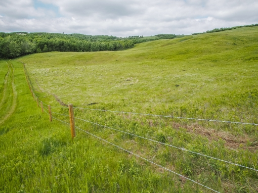 Fence line and foothills