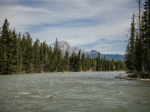 Rounding a bend on the Athabasca River near Jasper