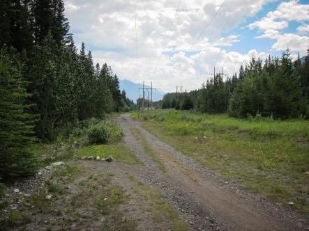 Powerline Trail just above the Wyndham Resort