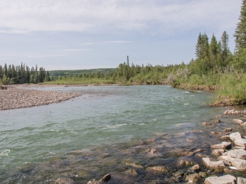 Elbow River in Griffith Woods