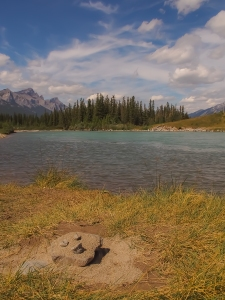 Bow River just east of Canmore, Mount Rundle in the distance