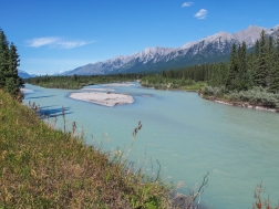 Recently created/modified gravel bars in the Bow River, just downstream of the town. Mount Lady MacDonald is in the background.