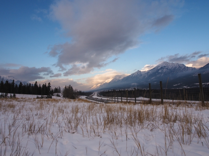 Dramatic clouds hung over the Bow Valley most of the day. Bright white clouds were moving high across the sky towards the northeast while the grey clouds hung quite still at a lower altitude for hours.