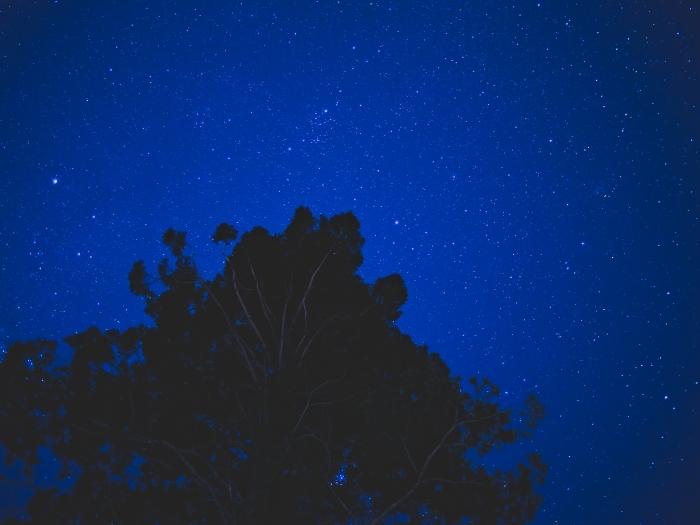 Tree-and-stars