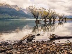 Glenorchy-reflection