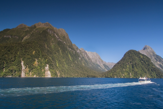 View from the Milford Sound Visitor Terminal