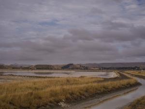 Lake-Grassmere-Saltworks