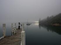 Marlborough-Sounds-Fog