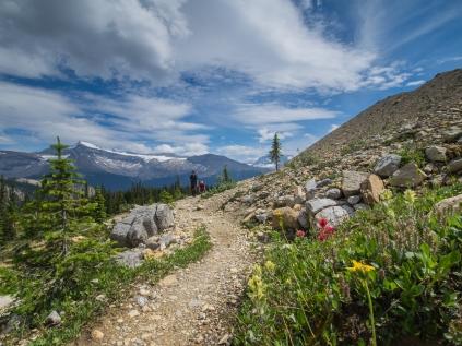 Iceline-Trail