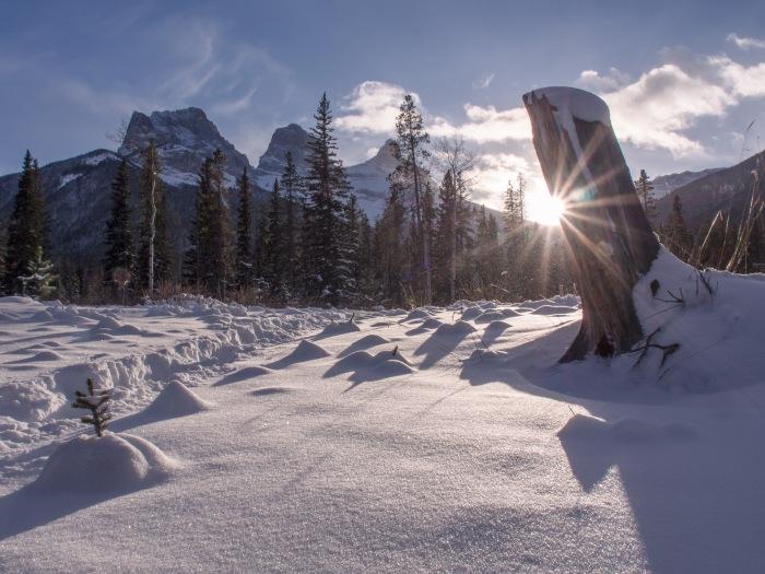 winter-sun