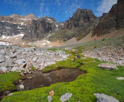 Wenkchemna-Pass-Trail