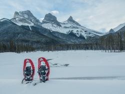 Simbioz-snowshoes
