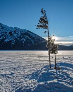 Lake-Minnewanka