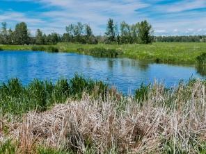 Fish-Creek-Park