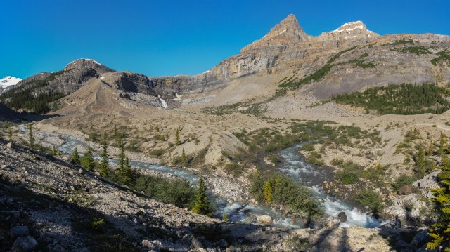 confluence-bow-river-upstream-of-bow-lake