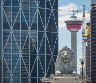 Calgary-tower-lion