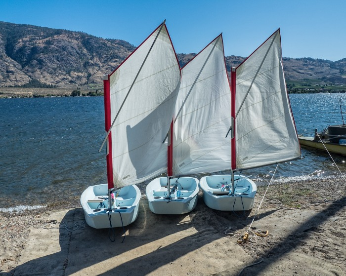 Opti-sailboats