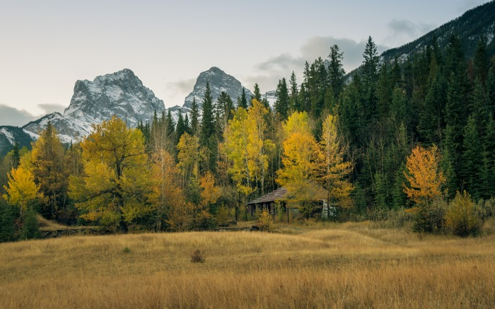 canmore-lamp-house