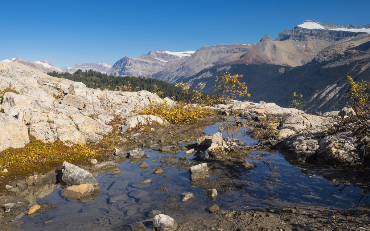 Hiking Yoho National Park - Iceline Trail in Autumn