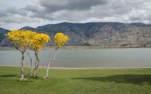osoyoos-lake
