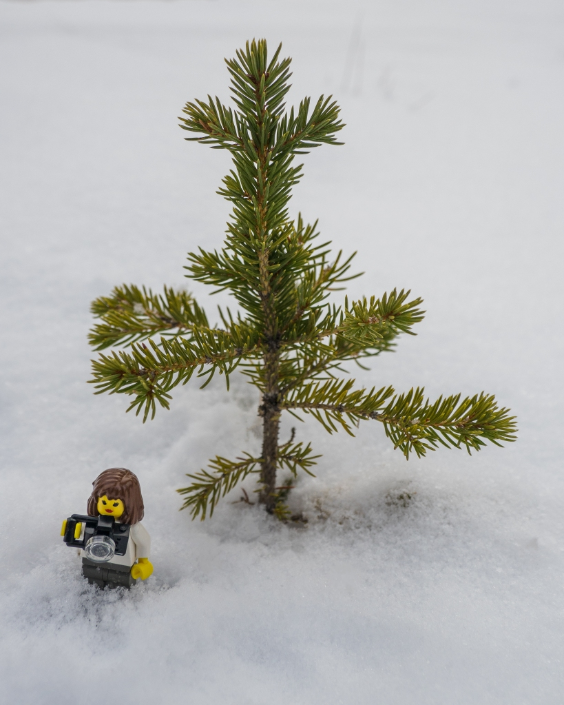 lego-minifig-in-snow