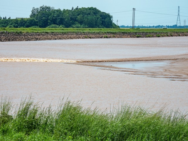 salmon-river-tidal-bore