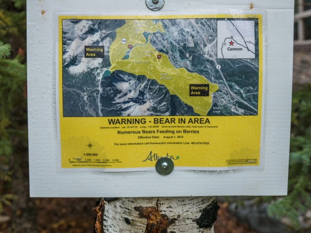 bear-warning-sign