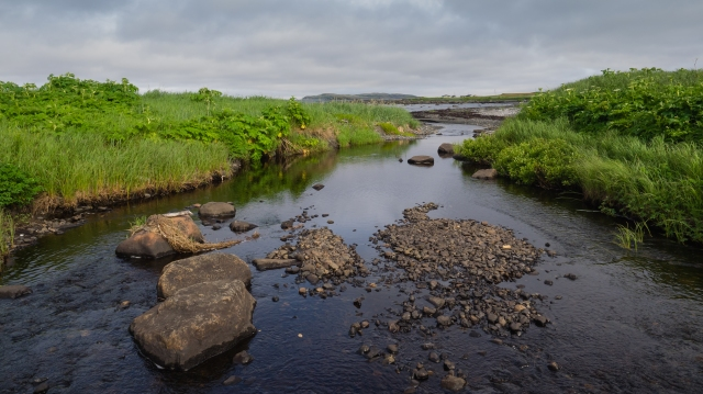 creek-outlet-to-ocean