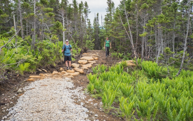 lookout-trail-gros-morne
