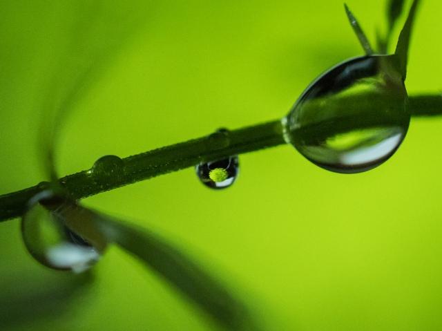 water-drop-refraction-macro
