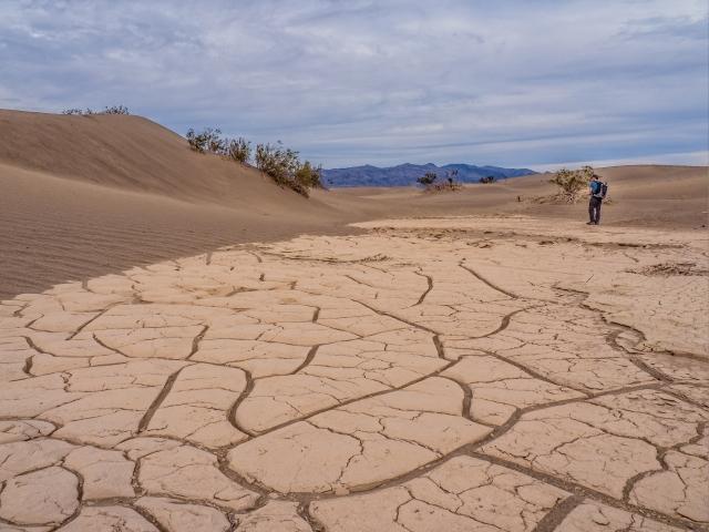 mesquite-dunes