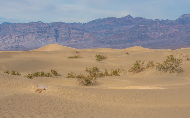 clothes-mesquite-dunes