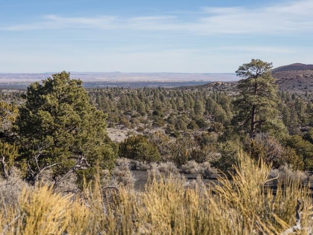 Painted-Desert-Vista